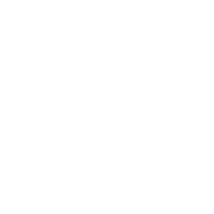 Beautiful Brains Footer